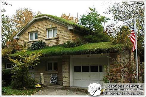 Обычный дом, но с зелёной кровлей