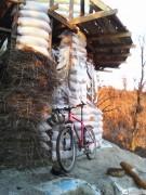 Мишин велосипед заслужил немалую славу в дальних путешествиях