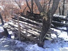 То, что осталось от дома на дереве, стало сушкой для дров